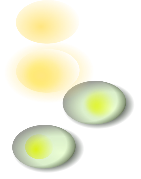 eggs drawn using inkscape